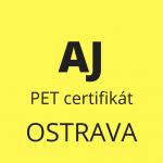Angličtina příprava k certifikátu B1 – PET (18996)